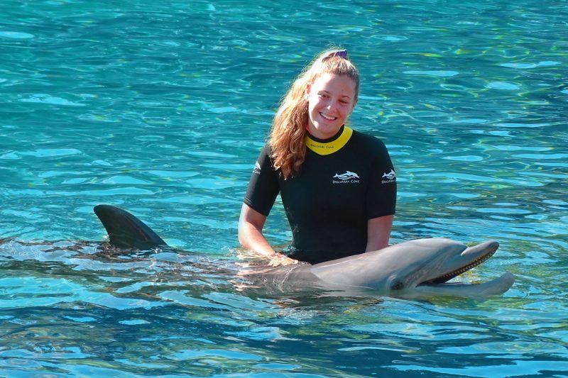 Nado con delfines en Disney